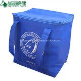 Kundenspezifischer Firmenzeichen-Drucken-Eignung-Kühlvorrichtung-Mittagessentote-Beutel (TP-CB273)