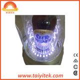 Bierflasche Glorifiers Plasma-Gefäß-Licht des heißen Verkaufs-kreatives LED