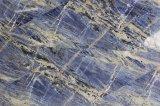 Tegels & de Plakken van het Kwartsiet van Namibië de Blauwe/Hoogstaande Groene