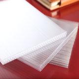 Hoja del panal del policarbonato de la buena calidad para el techo de la sala de estar