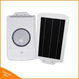 6W esterno tutti in un indicatore luminoso solare del LED per illuminazione della strada della via del giardino