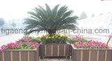 工場デザインTemiteの証拠の通りまたは庭または公園WPCの花プランター