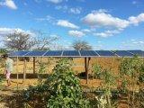 A fábrica fornece 3 anos de bomba de água solar material do aço inoxidável 304 da garantia em Uganda