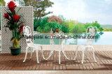Tableau HS6110dt extérieur/de jardin/patio Rattan& de fonte d'aluminium