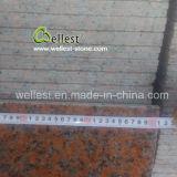 壁の床の敷物のクラッディングの下見張りのための石切り場の所有者G562のかえでの赤のポーランド人の花こう岩のタイル