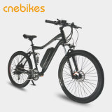 리튬 건전지 전기 자전거 허브 모터 전기 자전거