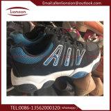De goedkope en Modieuze Grote Tennisschoenen van de Werf