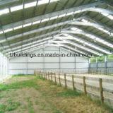 Edificio de la estructura de acero vertido para la arena del caballo