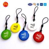 アクセス制御のためのISO14443A 13.56MHz Ntag213 NFCの札のエポキシの札