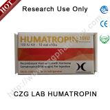 Poudre de stéroïdes GH La somatropine 191AA