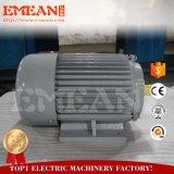 Preço competitivo 10HP aprovado pela CE Motor eléctrico com pequena bateria