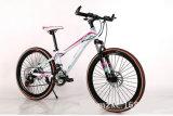 26 des Zoll-Stahlrahmen-Fahrrad-Gebirgsfahrrad-21 Fahrrad Geschwindigkeits-des Schieber-MTB