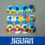 De professionele Sticker Van uitstekende kwaliteit van het Hologram van de Fabrikant Zelfklevende Veilige Echte
