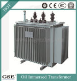 Trifásico de alto rendimiento Oil-Immersed 35kv Full-Sealed 1000kVA Transformador de Distribución