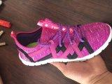 Negen Schoenen van de Voorraad van de Sport van de Vrouw van Kleuren