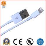 빠른 이동 전화 케이블은 USB 케이블로 삽입된다
