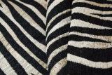 Tela da decoração do sofá do Chenille do estilo da zebra