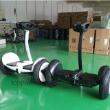 Auto che equilibra Hoverboard elettrico 10 pollici con il APP mobile