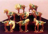A olaria Tri-Colored Tang (03)