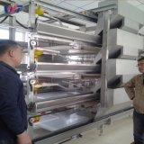 Galvanizado en caliente de prefabricados de estructura de acero galpón avícola granja de pollos con bajo coste
