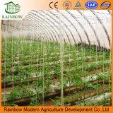 Пластиковая пленка Multi-Span выбросов парниковых газов для клубники и помидора высевающего аппарата