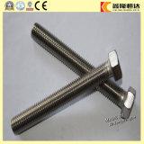 DIN933 de Bout van de Hexuitdraai van het roestvrij staal met Goede Kwaliteit