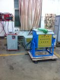 Het Verwarmen van de hoge Efficiency de Snelle Smeltende Oven van de Inductie voor Verkoop