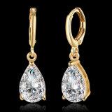 De nieuwe Juwelen van de Verkoop van de Oorringen van Platium van de Vorm van de Daling Zircon van het Ontwerp Hete Hete