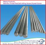 Het galvaniseren van de Draad Ingepaste Ingepaste Staaf van de Staaf/van de Koolstof Roestvrij staal,