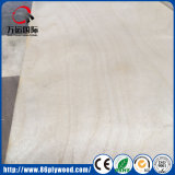 E0 E1 impermeabilizan la madera contrachapada fenólica del infante de marina de la base del abedul del álamo del pegamento de la melamina