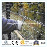 Piccola rete fissa animale per le pecore, rete fissa di vendite calde del metallo