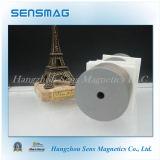 Magneet Van uitstekende kwaliteit van het Neodymium van NdFeB Permanet van de vervaardiging de Krachtige N55 voor Gebruikte Motor