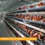 Bonne cage de poulet de modèle de Tianrui pour la ferme avicole