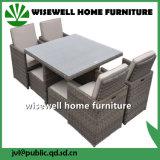 PE плетеной плетеной открытый дворик диван, вид в разрезе мебель (Ш X-023)