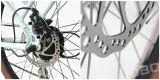 신식 LiFePO4 배터리 전원을 사용하는 전기 도시 E 자전거, 36V 250W 모터 (JB-TDE23Z)를 가진 페달을%s 가진 자전거 발동기 달린 자전거