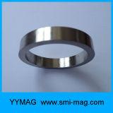 Goldener/silberner Farbe Fecrco Ring-Magnet
