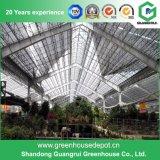 Serre chaude végétale de film plastique de fleur de Multi-Envergure de la Chine