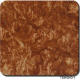 Film hydraulique Hidrografik Tswd12461 d'impression des graines de noix de largeur de Tsautop 0.5m/1m de configurations de l'eau de transfert d'impression de films de film d'impression hydrographique en bois d'Aqua