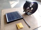 12W 12inch 무브러시 DC 모터 (SN2013012)를 가진 잘 고정된 태양 강화된 다락 통풍기