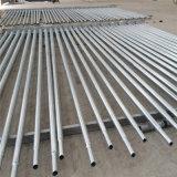 6m 30W 36W LED lámpara solar de la calle (DXSLP-003)