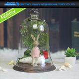cupola di vetro di campana di vetro del Cloche del Regular di 22*30cm con il cassetto di bambù