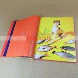 Livre d'art de l'impression pleine couleur Impression de livres Casebound