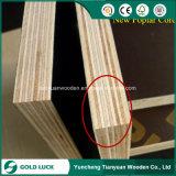A película enfrentou a madeira compensada/madeira compensada laminada/madeira compensada do molde/madeira compensada marinha