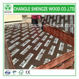 15/18/21mm Concrete Formwork Marine Plywood