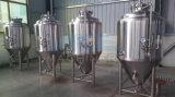 equipo de destilación de cerveza artesanal de micro (ACE-FJG-2D)