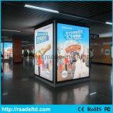 Подгонянный размер рекламируя афишу светлой коробки ткани