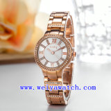 Edelstahl-Uhr passen Luxuxarmbanduhren an (WY-018A)