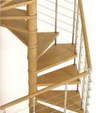 現代デザインスペース節約の穏やかな鋼鉄木製の螺旋形の螺線形階段
