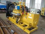 250kw/312.5kVA de slimme die Diesel Genset van de Macht door de Motor van Shanghai wordt aangedreven