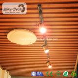 Los productos de WPC impermeabilizan el techo plástico del PVC